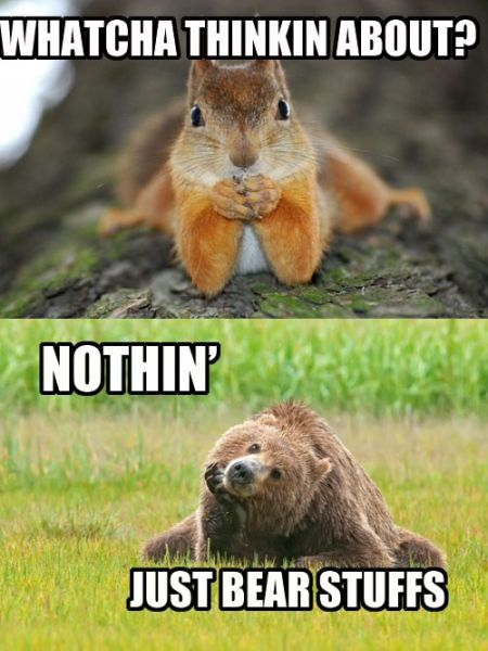 Whatcha Thinkin About? - funnypictures.me