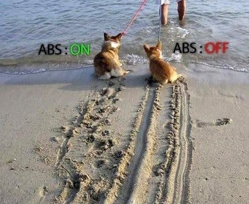 ABS Brakes - funnypictures.me