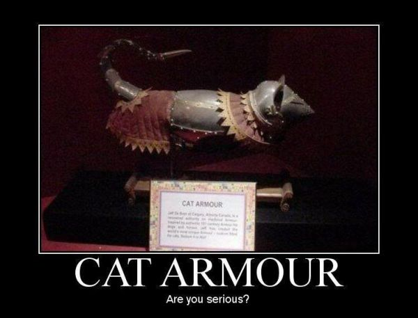 Cat Armour - funnypictures.me