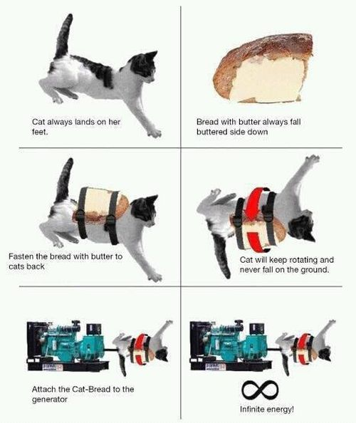Cat Infinite Energy - Funny pictures