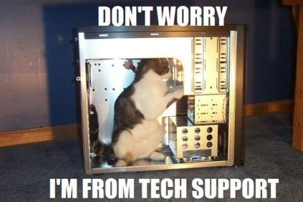 Cat Tech Support - funnypictures.me