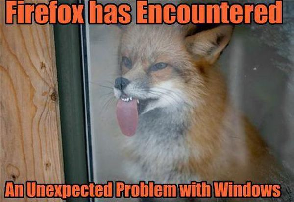 Firefox Has Encountered Problem With Windows - funnypictures.me