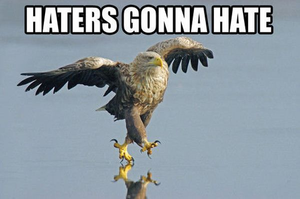 Haters Gonna Hate - funnypictures.me