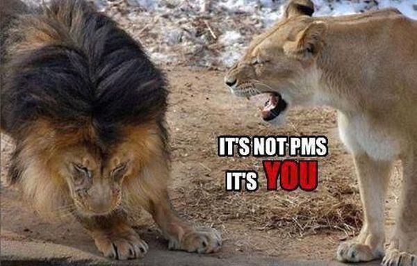 It's Not PMS! - funnypictures.me
