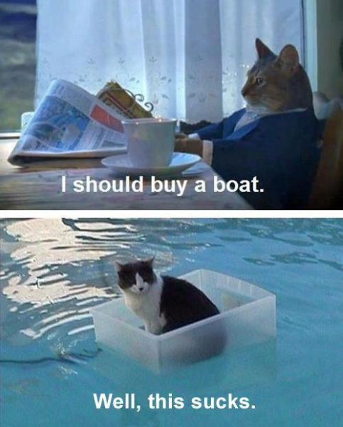 I Should Buy A Boat - funnypictures.me
