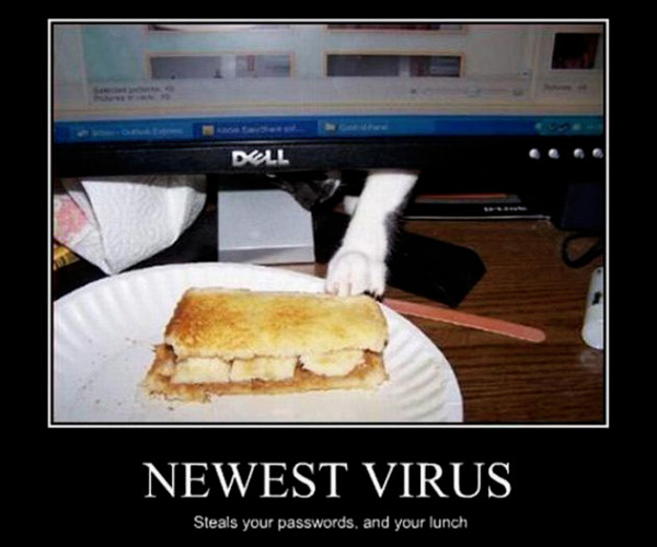 Newest virus - funnypictures.me