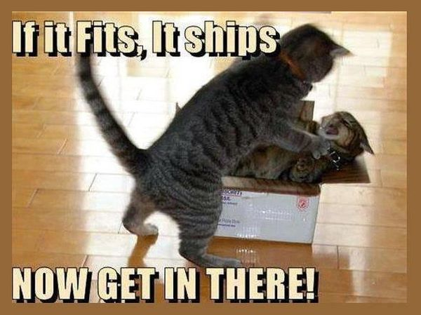 If It Fits It Ships - Funny pictures