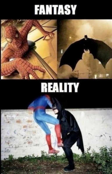 Fantasy vs reality - Funny pictures
