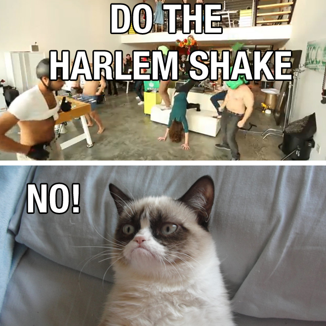 Grumpy cat hates harlem shake - Funny pictures