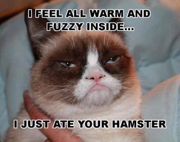 I fell all warm and fuzzy - Funny pictures
