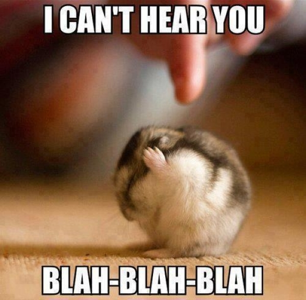 I Can't Hear You - Funny pictures