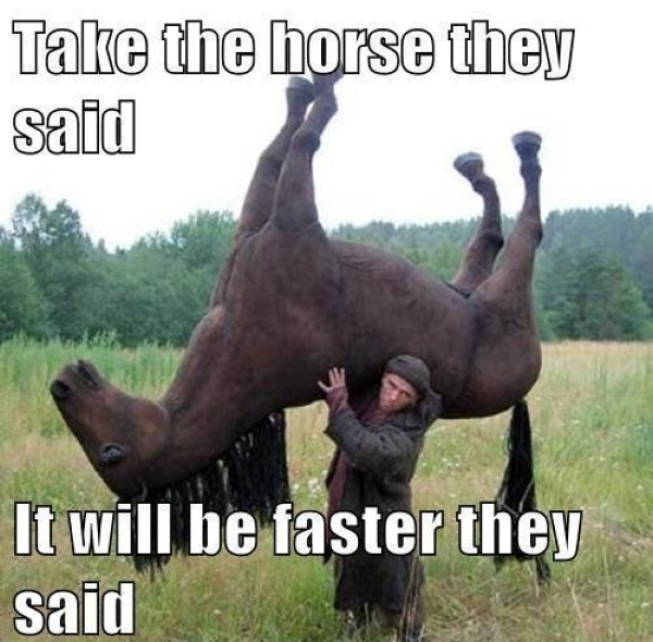 Take the horse - Funny pictures