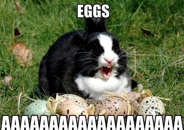Easter eggs - Funny pictures