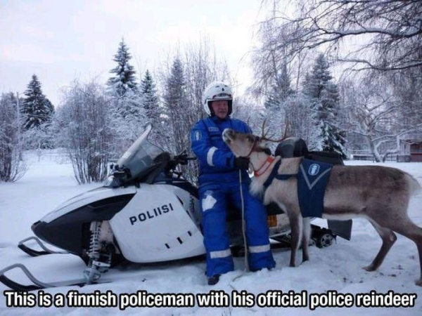Meanwhile In Finland - Funny pictures