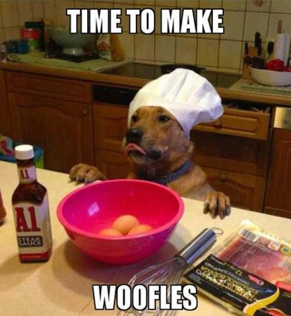 Let's Make Woofles - Funny pictures