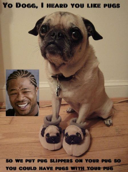 I Heard You Like Pugs - Funny pictures
