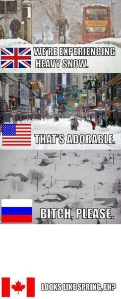 We Are Experiencing Heavy Snow - Funny pictures