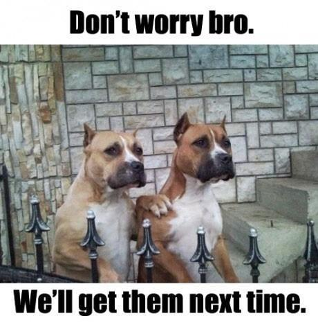 Don't Worry Bro - Funny pictures