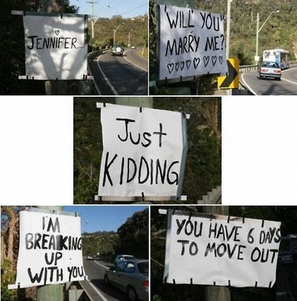 Will You Marry Me? - Funny pictures