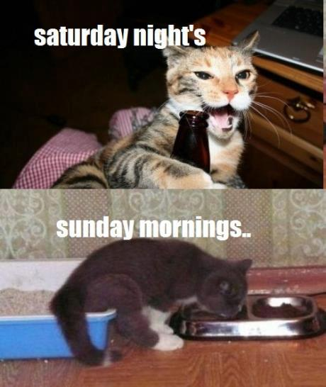 Saturday Nights - Sunday Mornings - Funny pictures