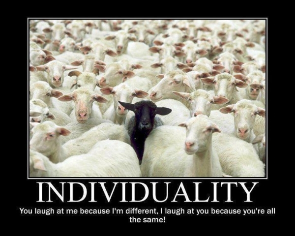 Individuality - Funny pictures