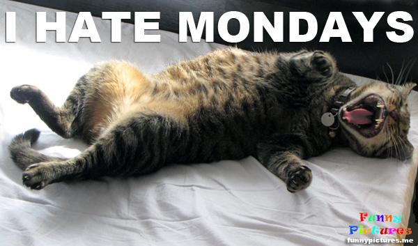 I Hate Mondays - funnypictures.me