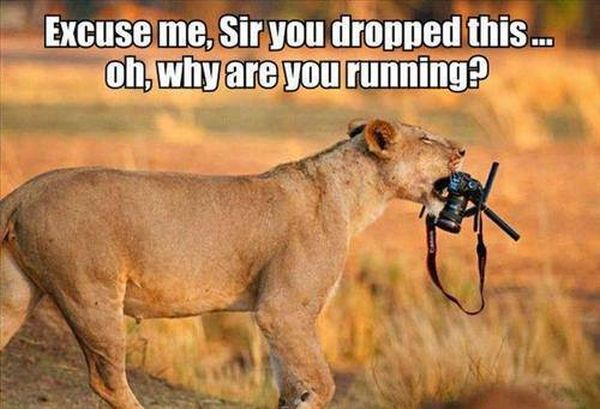 Excuse Me, Sir... - Funny pictures