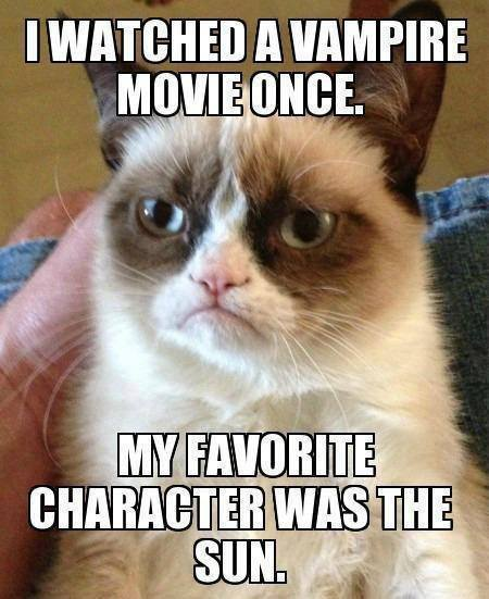 Grumpy Cat Watched Vampire Movie Once... - Funny pictures