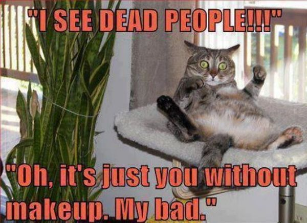 I See Dead People - Funny pictures