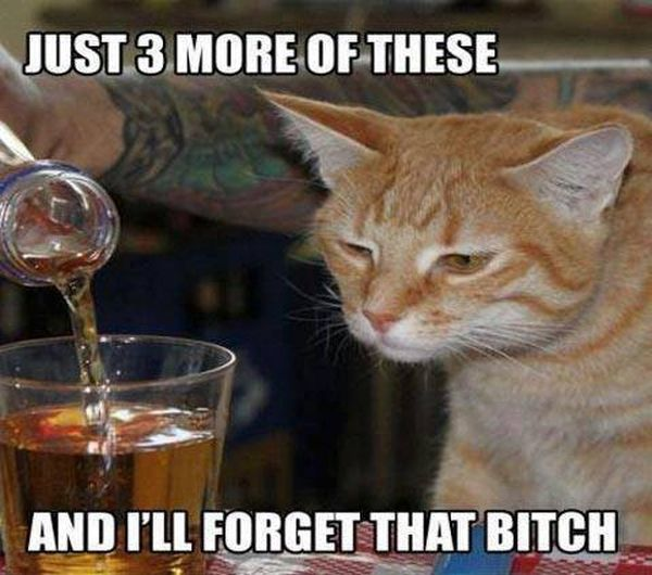 Just 3 More Of These - Funny pictures