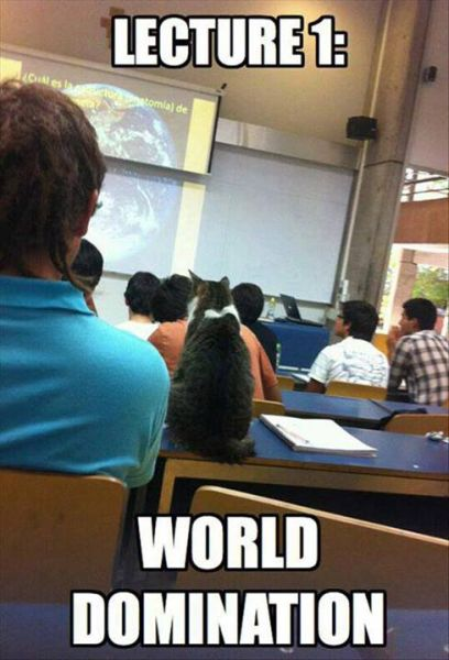 Lecture 1 - Funny pictures