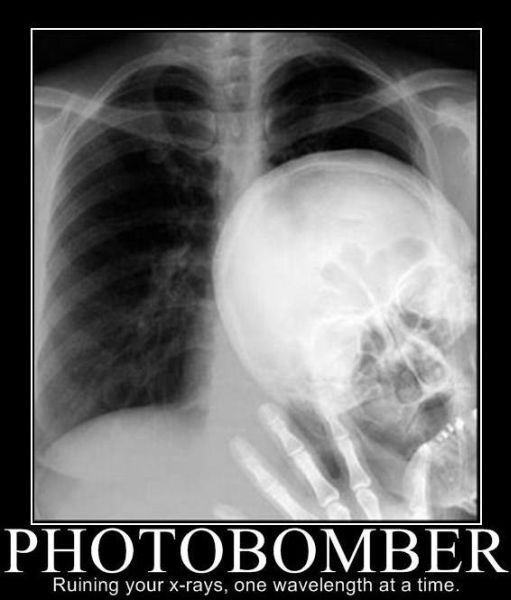 Photobomber - Funny pictures