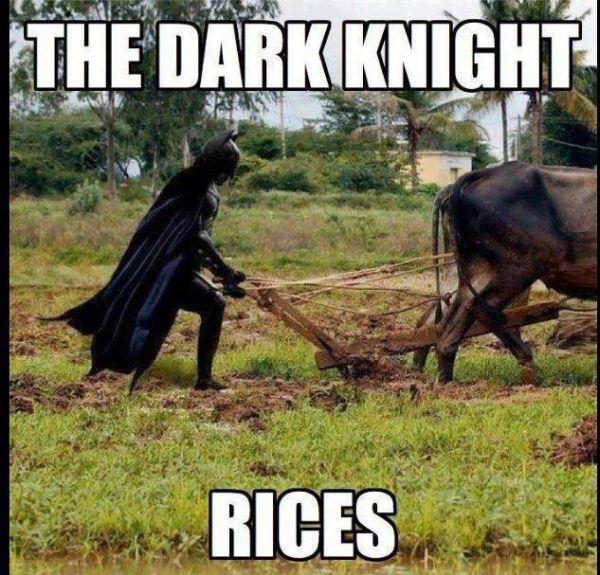 The Dark Knight - Rices - Funny pictures