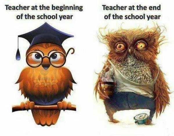 Teachers Will Understand - Funny pictures