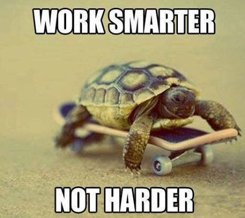 Work Smarter - Funny pictures