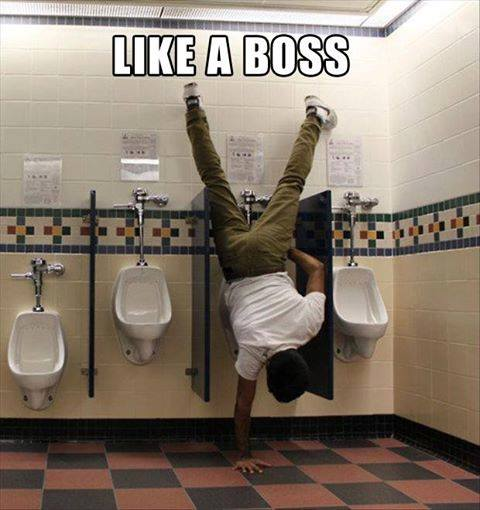 Like A Boss - Funny pictures