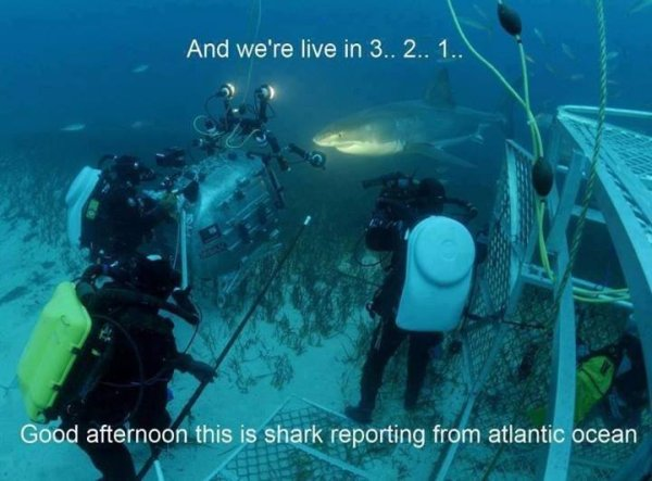 And We're Live In 3.. 2.. 1.. - Funny pictures
