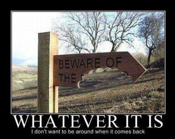 Beware of... - Funny pictures