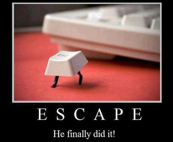 Escape - Funny pictures