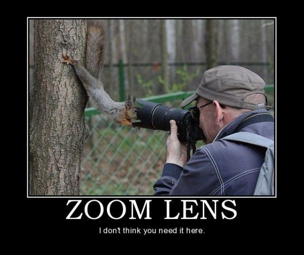 Zoom Lenses - Funny pictures