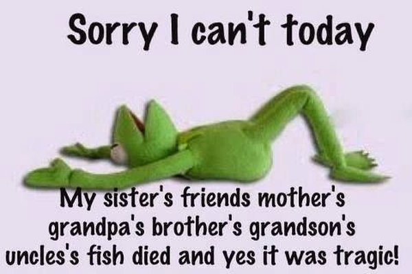 Sorry I Can't Today - Funny pictures