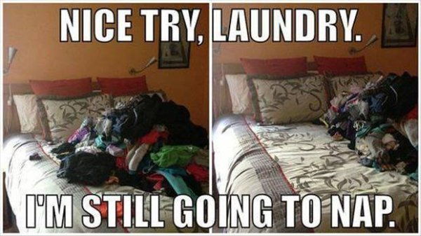 Nice Try Laundry - Funny pictures