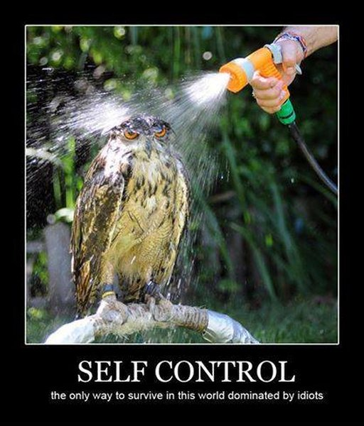 Self Control - Funny pictures