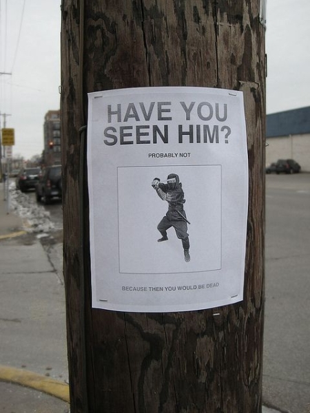 Have You Seen Him? - Funny pictures