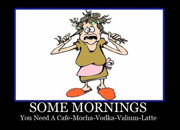 Some Mornings - Funny pictures