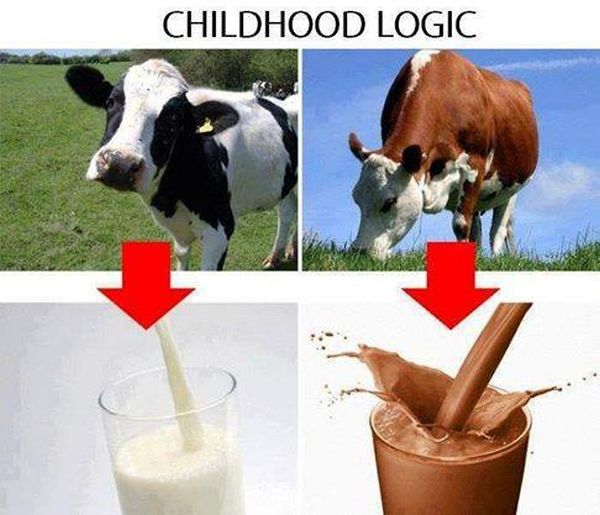 Childhood Logic - Funny pictures