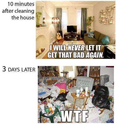 Cleaning The House - Funny pictures