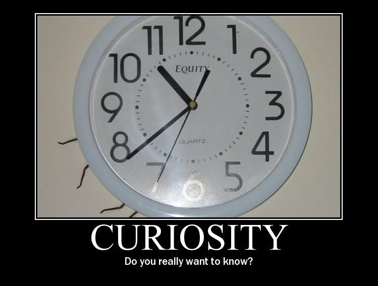 Curiosity - Funny pictures