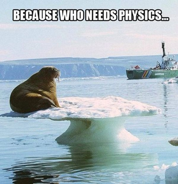 Because Who Needs Physics - Funny pictures