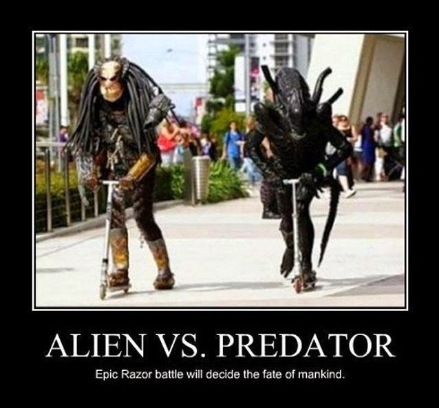 Alien Vs. Predator - Funny pictures